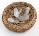 empty nest, children, college, alone, love, quiet