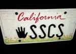 license plate, vanity plate, DMV, grandchildren