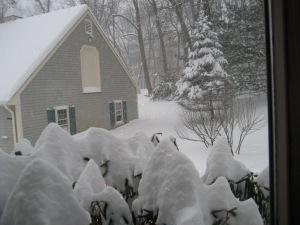 snow, spiritual, hush, winter scene, beauty, Christmast, winter wonderland