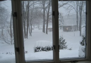 winter wonderland, snow, holiday, Christmas,