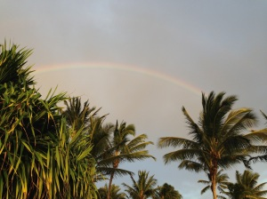 rainbow, Hawaii, Kauai, palm trees, spiritual