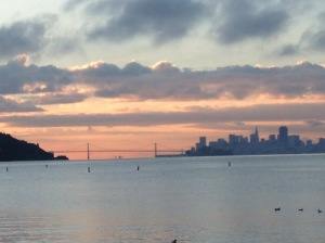 SF bay dawn, dawn, running
