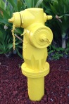 dogs, hydrant