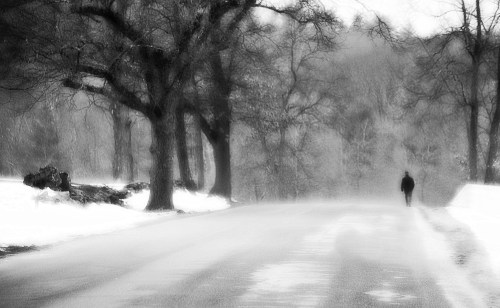 snow falling, winter, New England