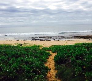 Kauai, Hawaii, walking, vacation