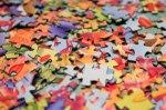 puzzle, nap, grandkids