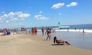 sea, ocean, vacation, creatures