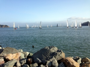 Sailing on the Bay by Pamela S. Wight