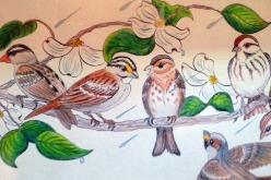 bird calls, wildlife, New England storm, children's book