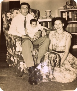 memories, photo album. 1950s family
