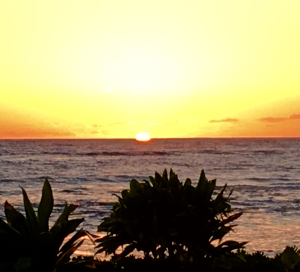dementia, sunset, Kauai photography