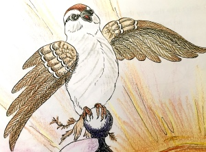 children's book, sparrow