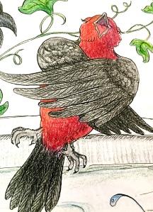 children's picture book, birds