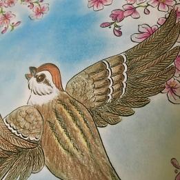 Birds of Paradise, Pamela S. Wight