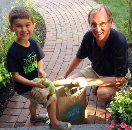 husking corn, summertime, fresh corn