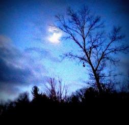 Halloween, moon