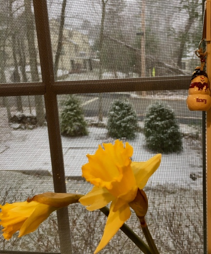 March, New England, spring