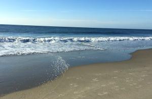 ocean, seashore, Ocean City NJ