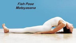 fish pose, yoga