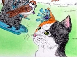 illustrated children's book. book about cat