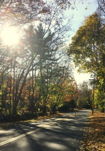 autumn, New England, family, granddaughter