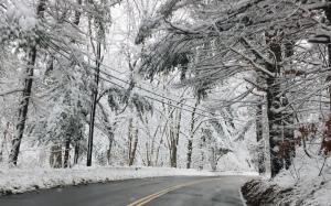 snowstorm, New England winter
