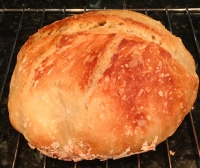 no-knead bread, baking, bread
