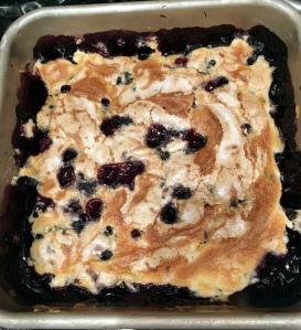dessert, blueberries, blueberry cake