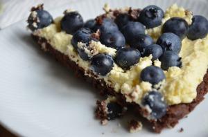 blueberry cake, stain, laundry