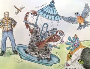 old man with birds and cat, Shelley Steinle, children's illustration