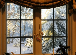winter scene, snow, window