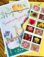 snail mail, birthday cards, mail, stamps